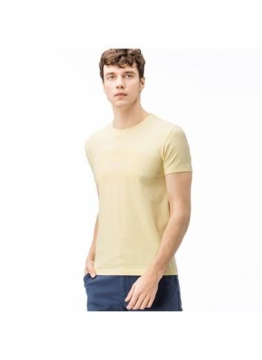 Lacoste Tişört Sarı